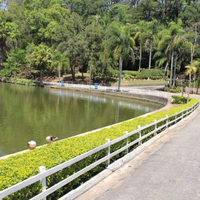 Estado abre consulta pública de concessão dos parques Cantareira e Horto Florestal